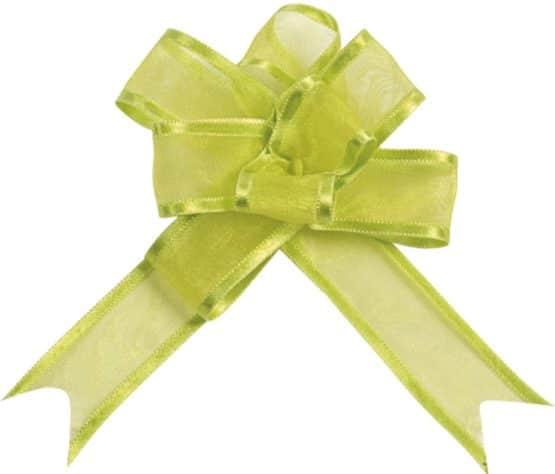 Organzaschleife grün, mit Umband - hochzeitsbaender, hochzeitsaccessoires