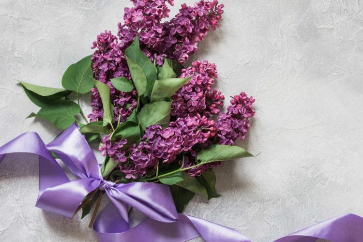 Gartenblumen mit Satinband als Geschenk