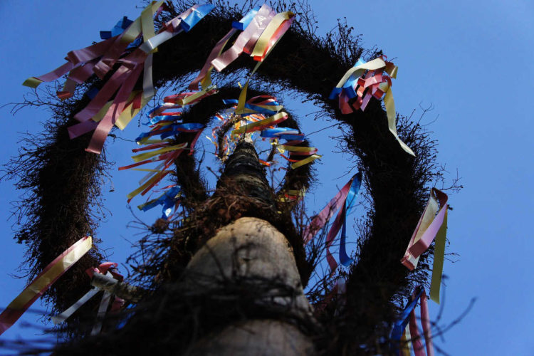Maibaum Bänder aus Stoff jetzt günstig kaufen - satinband, maibaum, deko