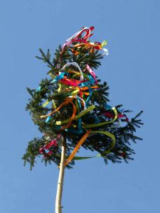 Maibaumbänder wehen im Wind