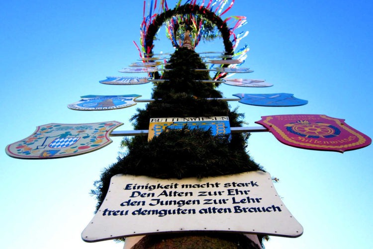 Der Maibaum-Brauch - maibaum