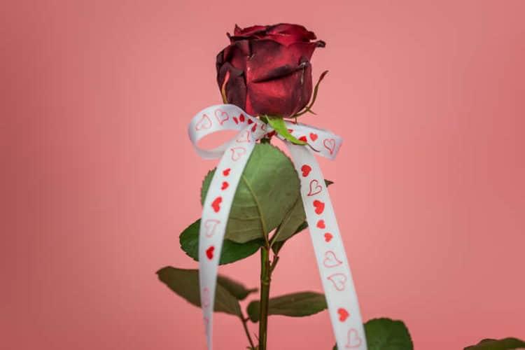 Geschenkideen für den Valentinstag - valentinstag
