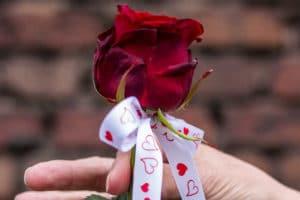Valentinstag - das Fest der Verliebten - valentinstag